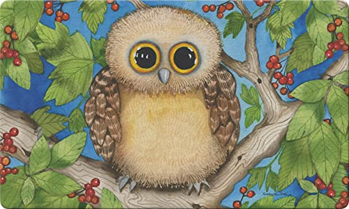 Toland Home Garden Hoot Hoot 18 x 30 Inch Decorative Floor Mat Cute Owl Bird Branch Berries Doormat