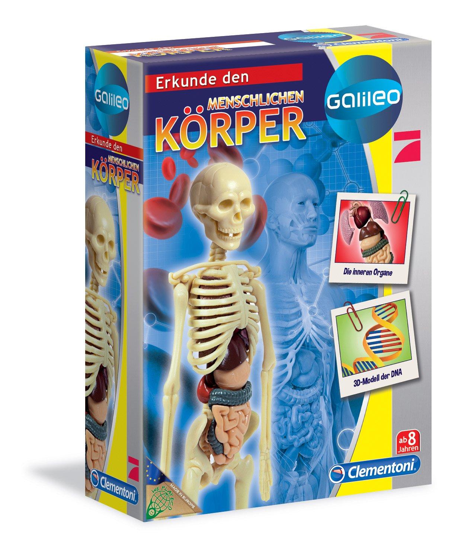 Menschlicher Körper-Anatomie-Modell der Learning Resources-4.5 \'\'...