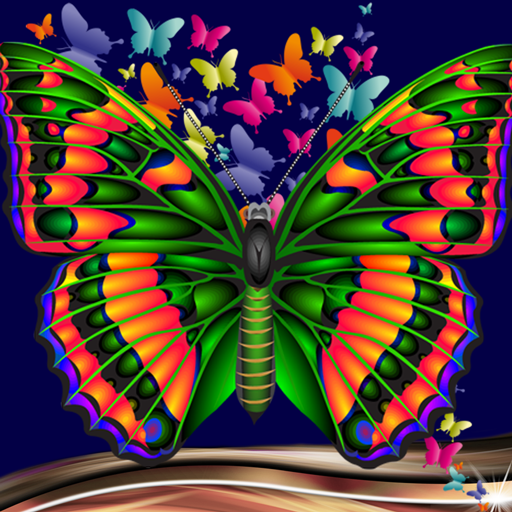 Amazon Com Butterfly Photo Collage Appstore For Android
