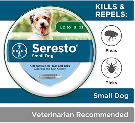 Bayer Animal Health Seresto Collier Anti Puces Et Tiques