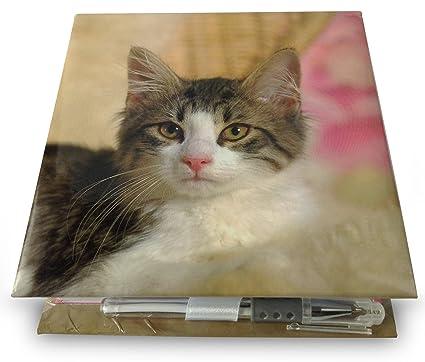 Gatos y gatitos bloque libreta con bolígrafo