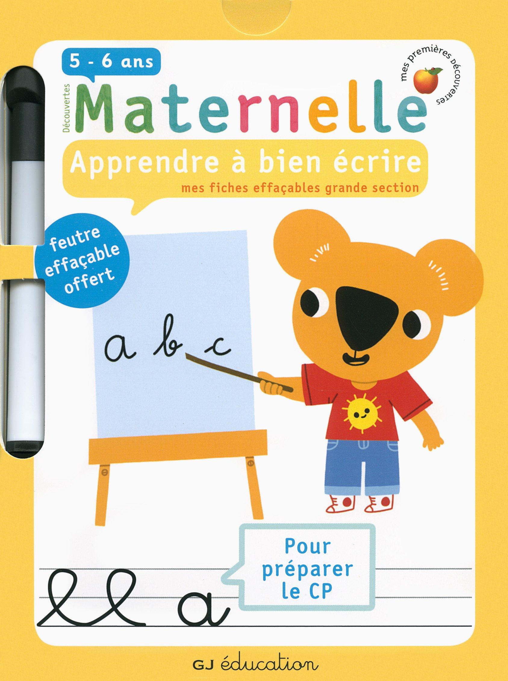6d3da1e1ea5 Amazon.fr - Apprendre à bien écrire   Mes fiches effaçables grande section  - Delphine Gravier-Badreddine