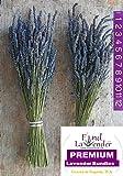 """Findlavender - Lavender Dried Premium Bundles - 20""""- 24"""" L - (2 Bundles) - 2016 Harvest"""