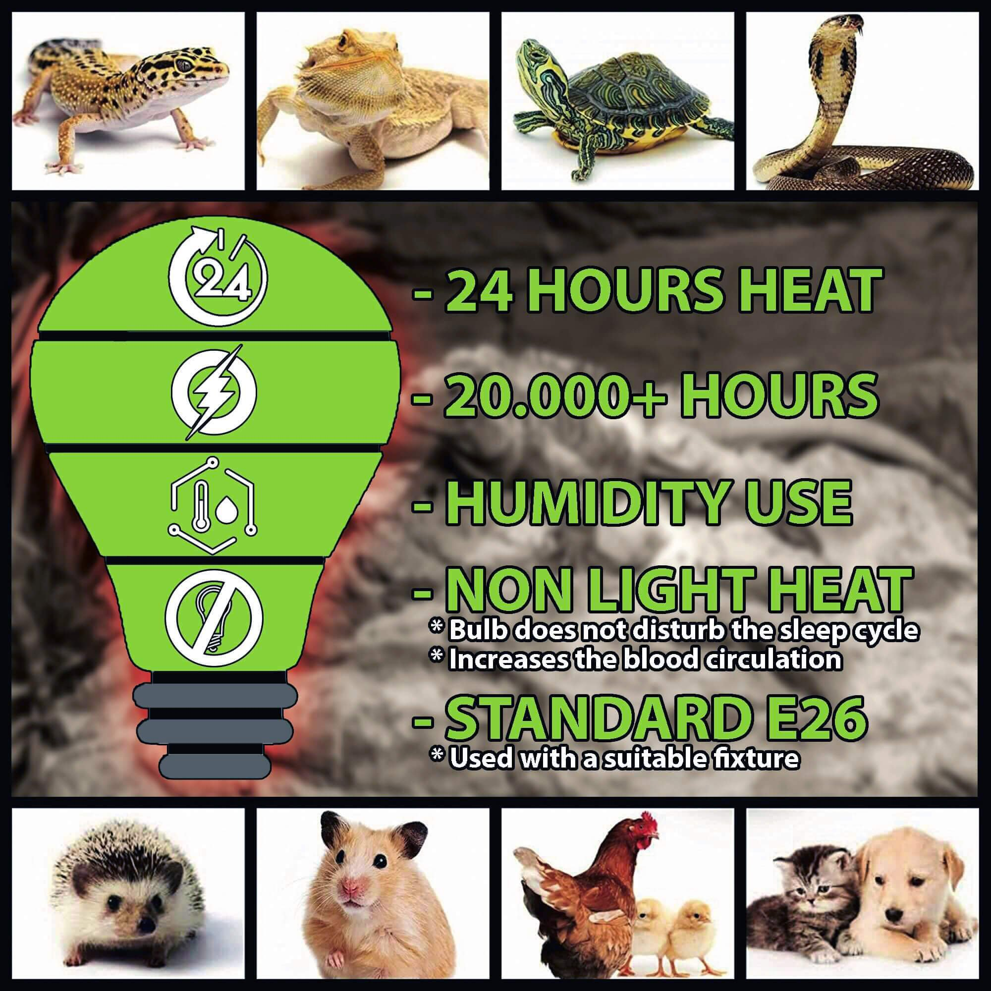 Ceramic Infrared Heat Emitter Lamp 200W | Reptile Brooder Chicken Coop Outdoor Pet Heater Bulb | 20,000+ Hours Power Lamps by Promondi by Promondi (Image #3)