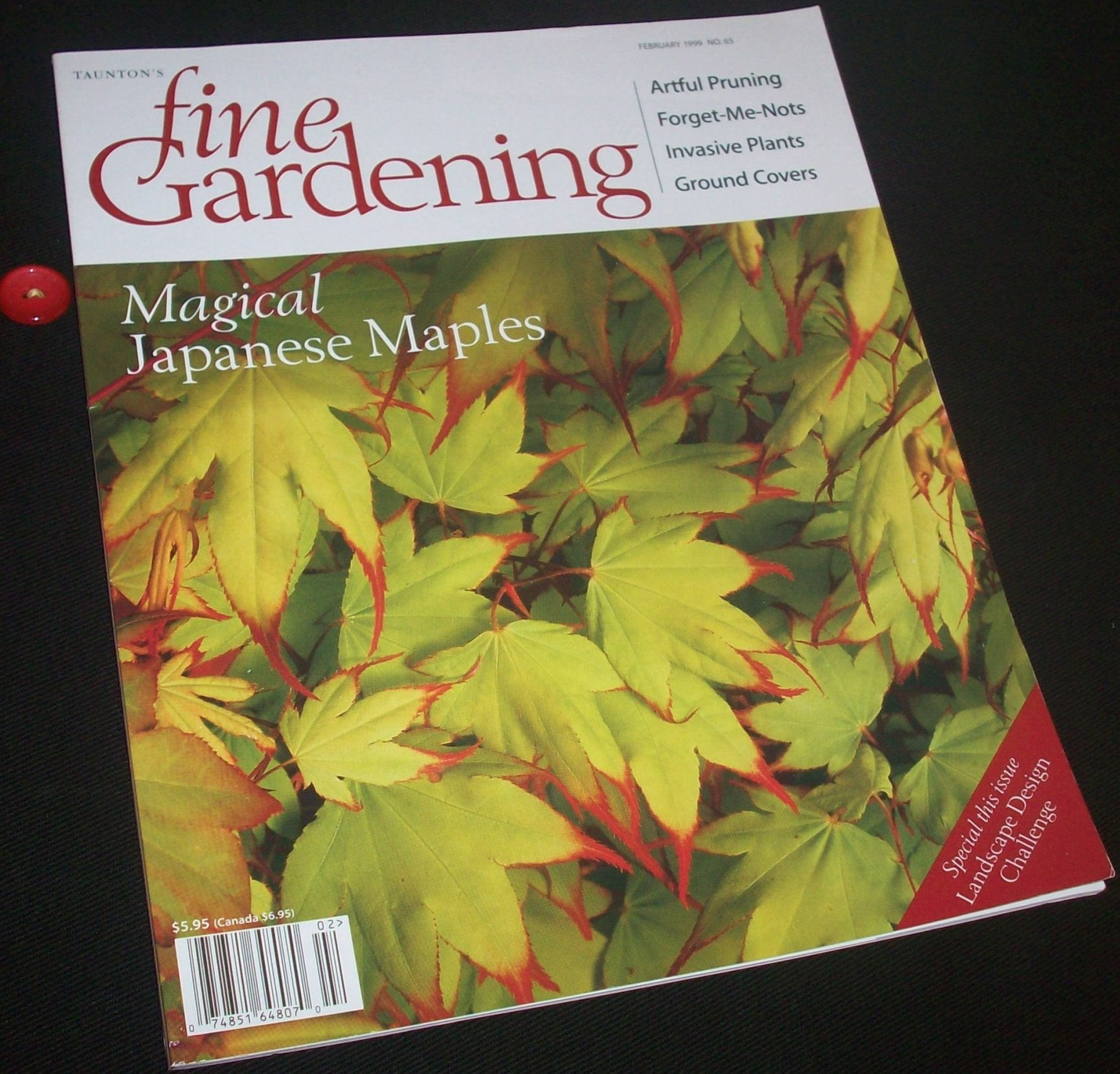 Tauntons Fine Gardening Magazine Volume 65, February 1999 Including: Magical Japanese Maples; Keeping up with an Ever Changing Garden