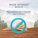 Blue Buffalo Wilderness High Protein Grain