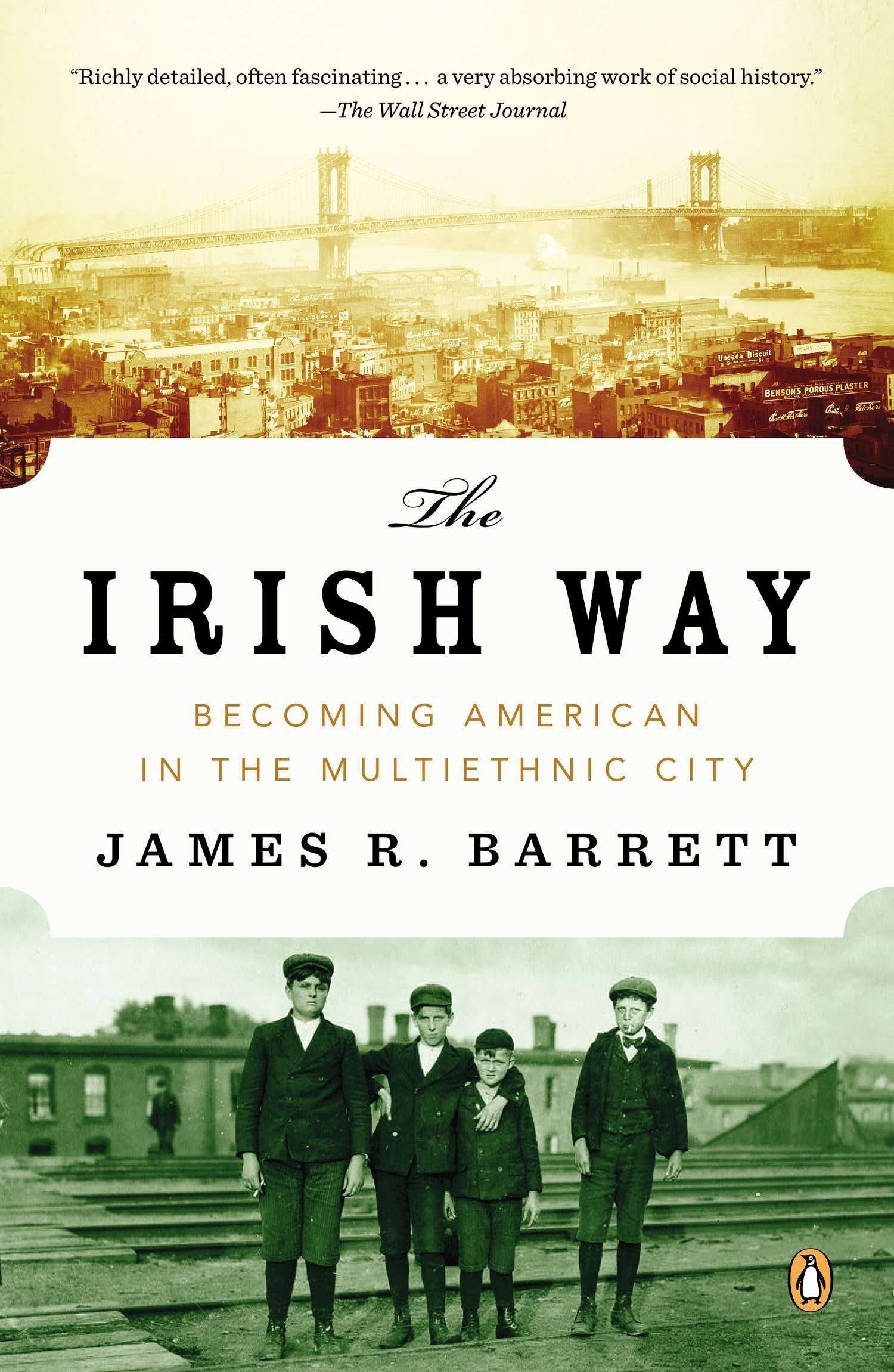The Irish Way: Becoming American in the Multiethnic City (The Penguin History of American Life) Text fb2 book