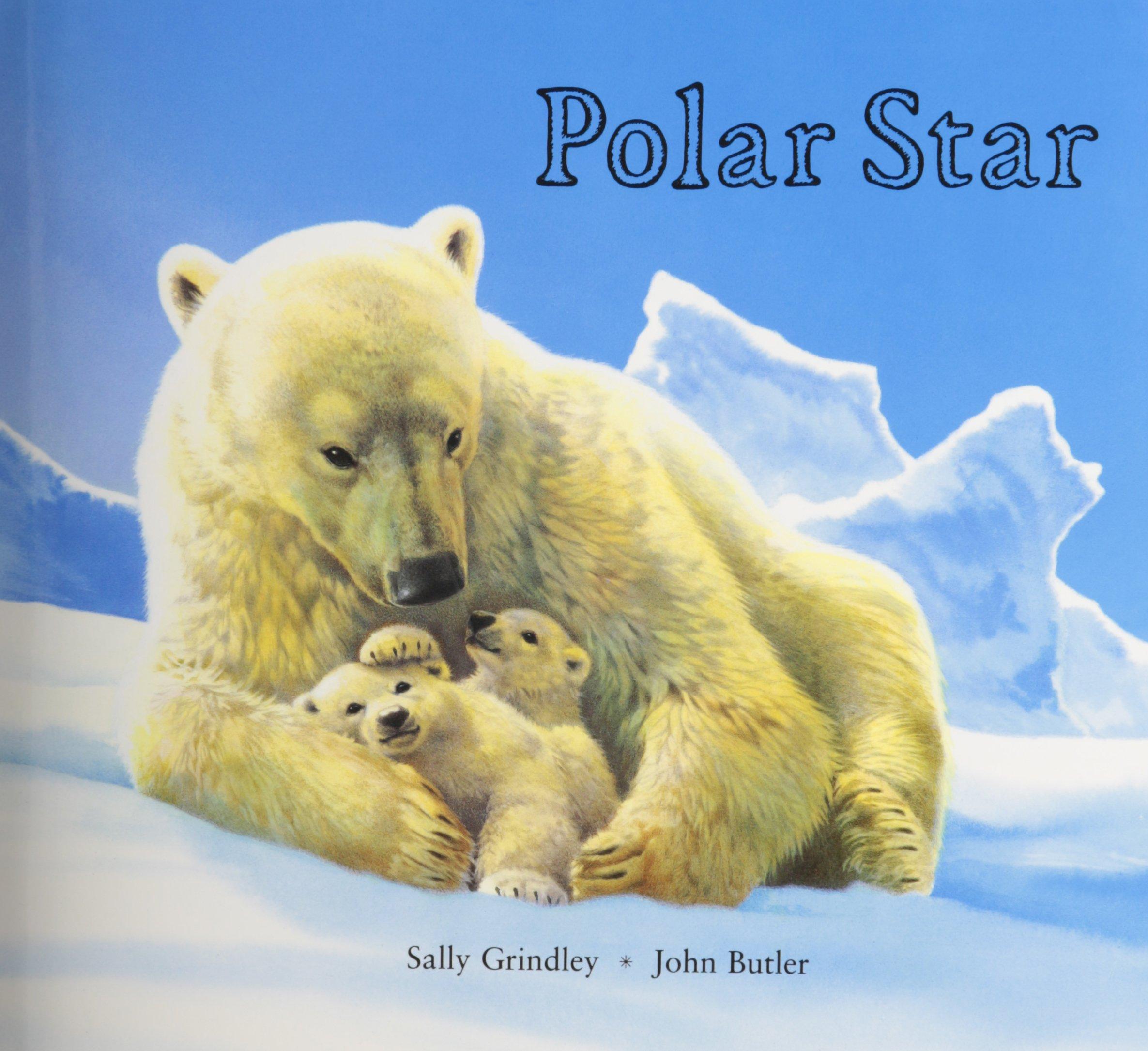 Polar Star Sally Grindley Professor John Butler 9781561451814 Amazon Books