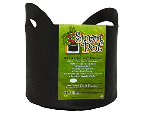 smart pots 10gallon smart pot softsided container black with cut handles