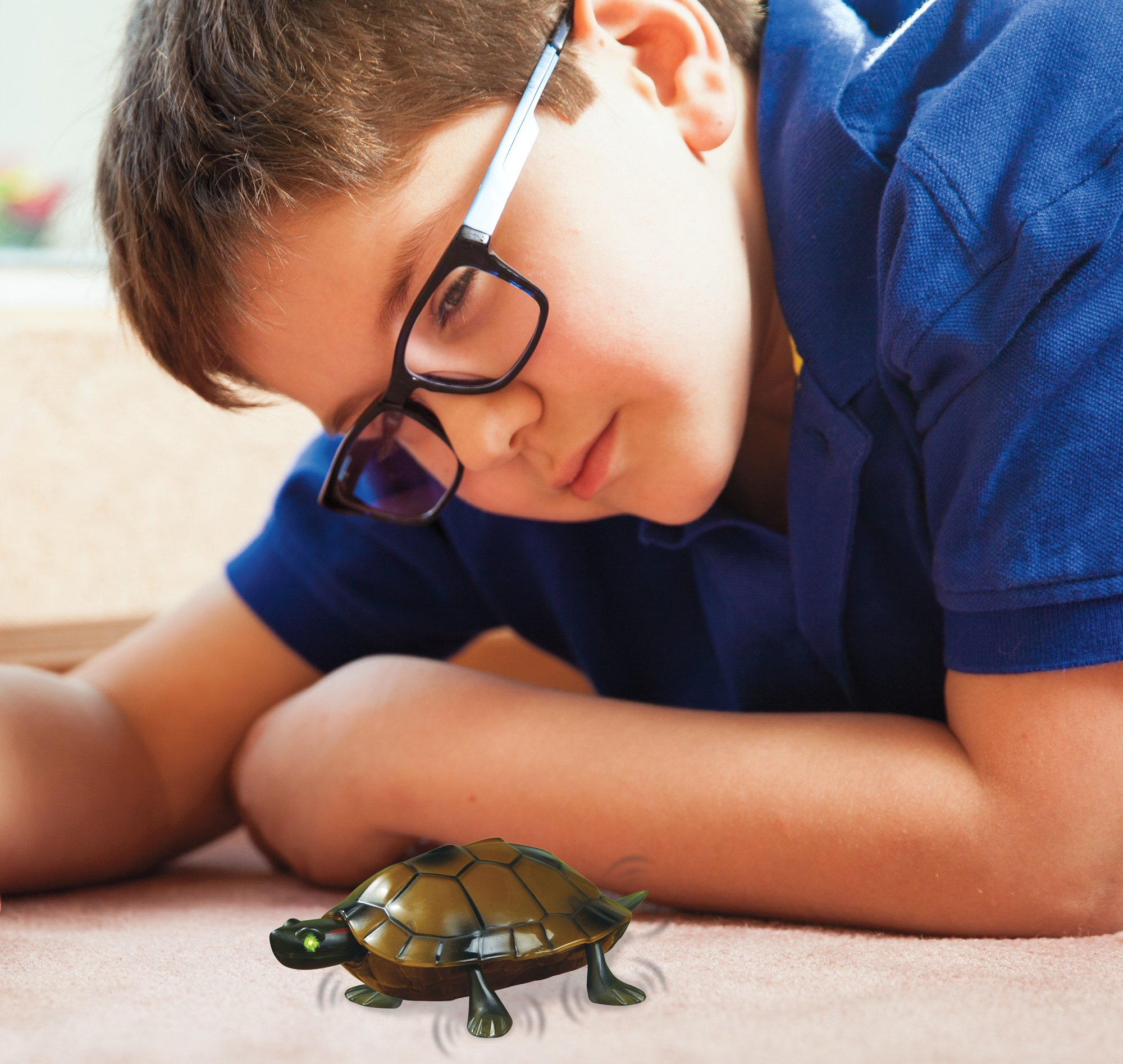 The Paragon Remote Control Turtle - RC Animal Toy, Turtle Toy for Kids and Adults by The Paragon (Image #3)