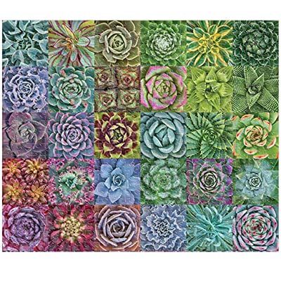 1000 Piece Adult Children Puzzle Jigsaw, Ecstasi Succulent Spectrum Plants Different Kinds Multi Color Green Purple Tone Eye Protection Painting Picture Home Room Decoration Parent Kid Friend Game Toy: Home & Kitchen