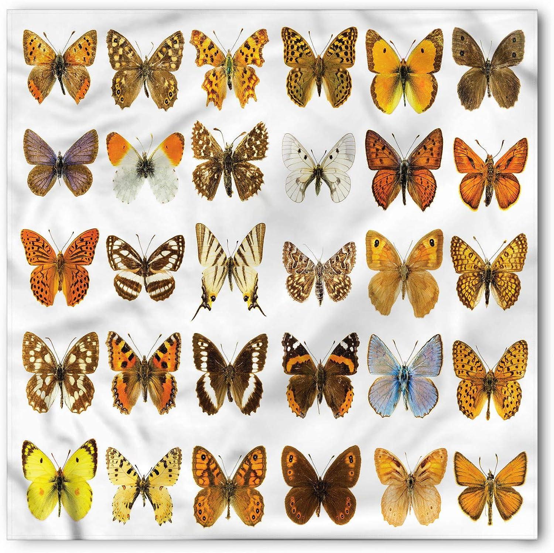 Hair Wrap Ambesonne Animal Head Scarf Butterfly Design Art