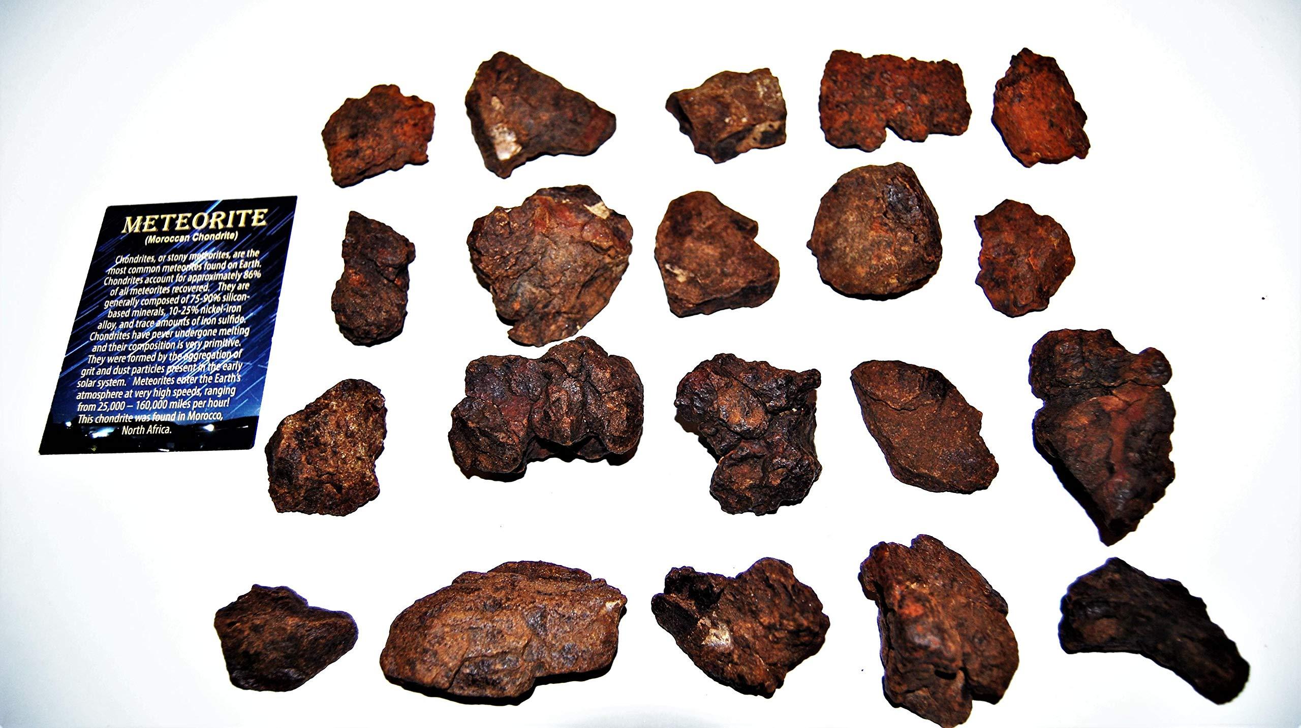 Fossils, Meteorites, & More Moroccan Chondrite Stony Meteorite Large B Grade Lot 1000 Grams