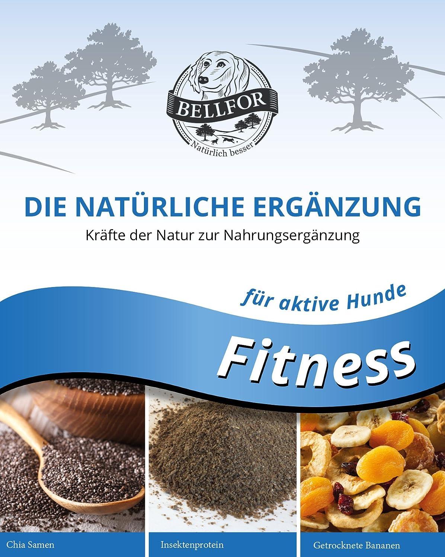 bellfor Complemento comida para perros activa Fitness - Polvo - 250 g: Amazon.es: Productos para mascotas