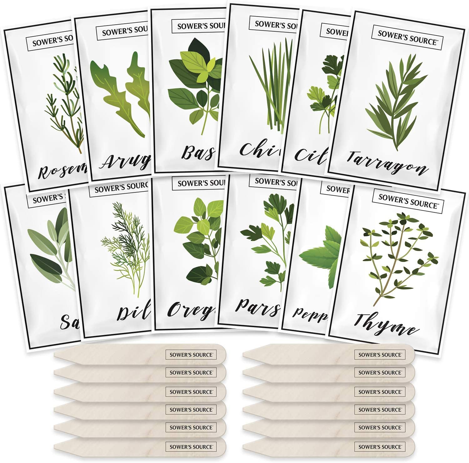 Herb Seeds for Planting – 12 Non-GMO Herb Garden Seeds for Planting Herbs: Basil Seeds, Dill, Chives, Oregano, Sage, Peppermint, Cilantro, Thyme, Rosemary, Tarragon, Parsley, Arugula