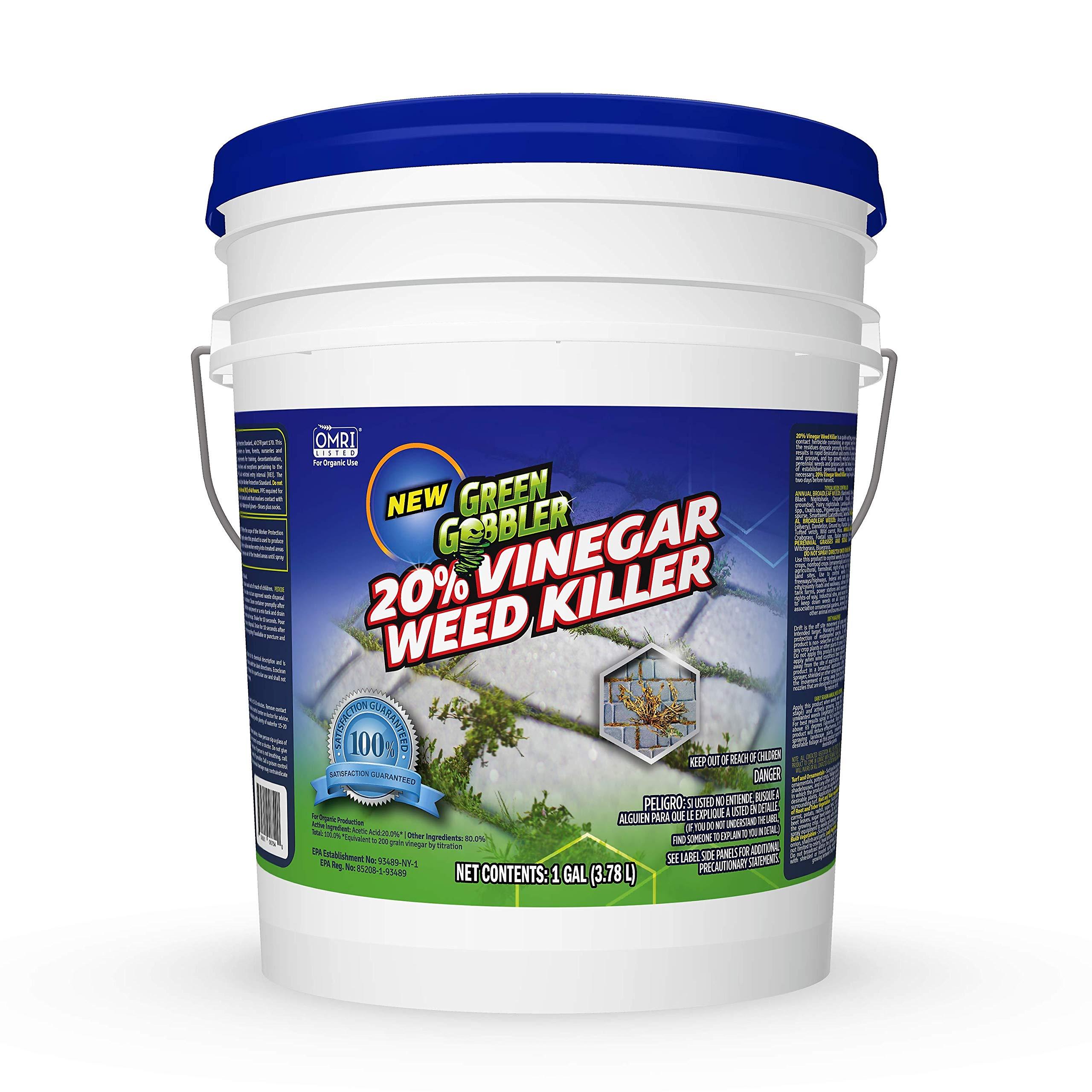 Green Gobbler 20% Horticultural Vinegar Weed Killer | Herbicide | Natural Weed Killer | Organic Weed Killer (5 Gallon Pail) by Green Gobbler