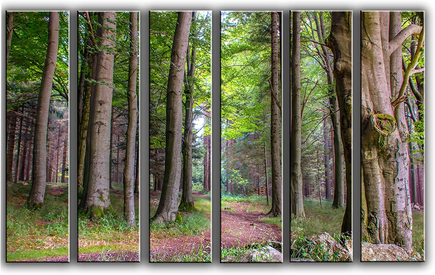 X-Large 6 Piece Forest and Trees Wall Art Decor Picture Painting Poster Print on Canvas Panels Pieces - Nature Theme Wall Decoration Set - Trees Wall Picture for Living Room 44 by 67 in