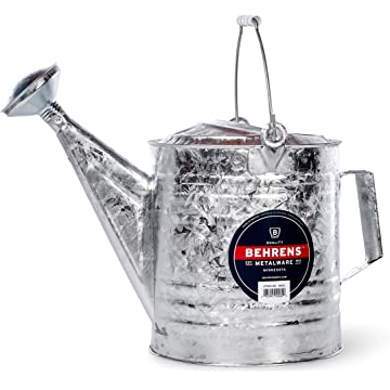 cheap Behrens Silver 2020