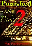 Punished in Paris, Part 2: A Bisexual BDSM Novella
