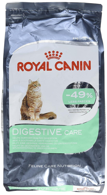 Royal Canin Gato Comida Digestivo confort Seco bmix 4Kg: Amazon.es ...