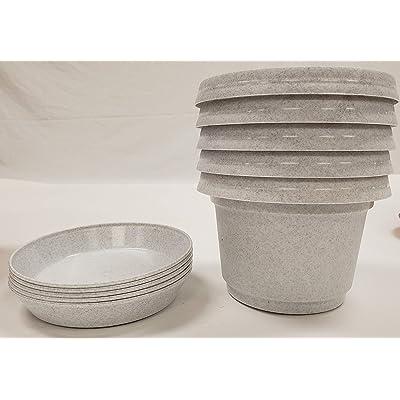 Case of 5 Austin Planter & Saucer Granite Color 7 inch, Plastic Planter, Flower Pot, Nursery Pot, Seedling Pot Planter, Colorful Planter, Plant Container, Seed Starter Pot with Saucers : Garden & Outdoor