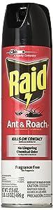 Raid Ant & Roach Killer Spray