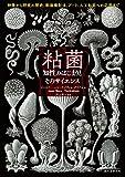 粘菌 知性のはじまりとそのサイエンス: 特徴から研究の歴史、動画撮影法、アート、人工知能への応用まで