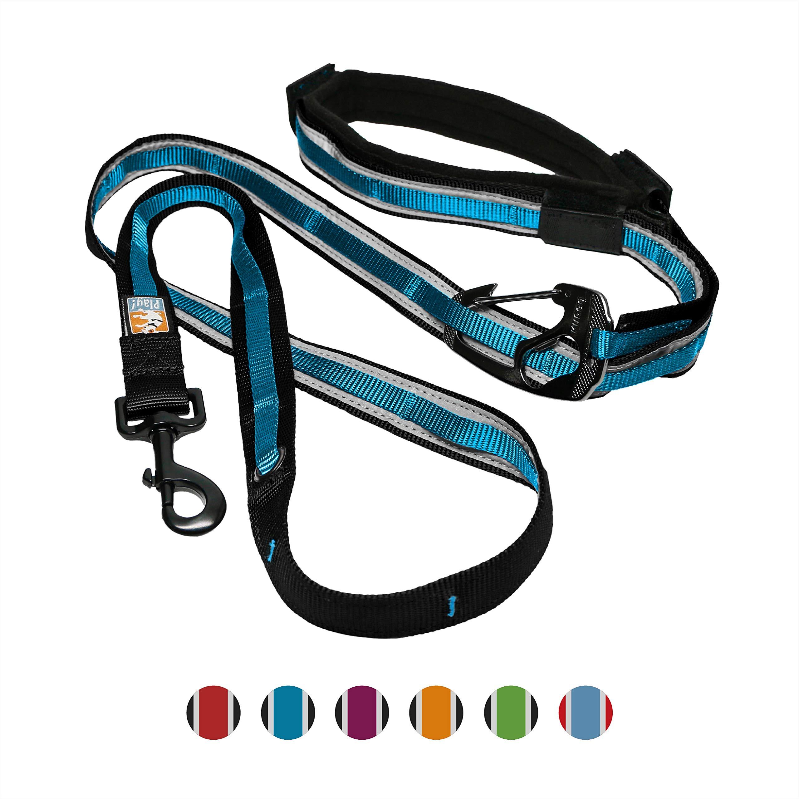 Kurgo 6 In 1 Hands Free Dog Leash   Reflective Running Belt Leash for Dogs   Crossbody & Waist Belt Leash   Carabiner  Padded Handle   for Training, Hiking, Or Jogging   Quantum Leash (Coastal Blue) by Kurgo