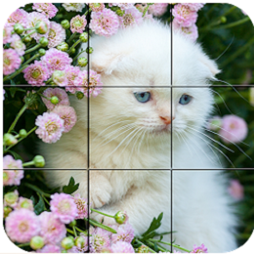 puzzles pictures - 6