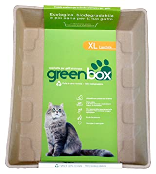 GREEN CAT greencat Greenbox Bandeja para Gatos desechable, XL: Amazon.es: Productos para mascotas