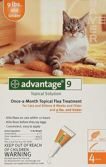 Amazon.com: Advantage Tratamiento antipulgas tópico ...