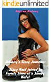 Sissy Maid joined by Female Slave at a sleazy motel (Johnny's Sissy Journey Book 2)
