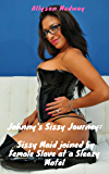 Sissy Maid joined by Female Slave at a sleazy motel (Johnny's Sissy Journey Book 2) (English Edition)