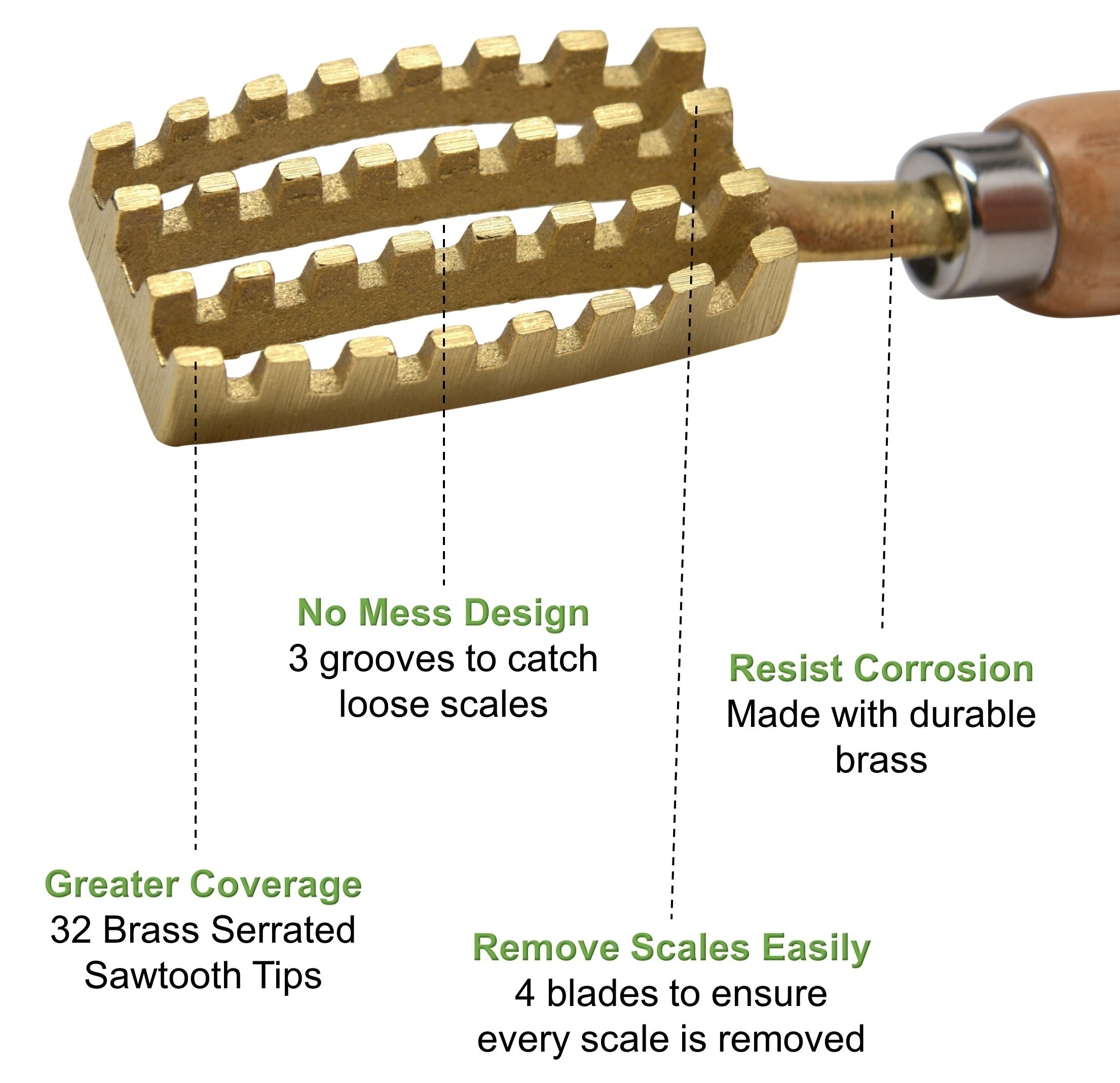 Kwizing Made in Japan Fish Scaler Brush with Brass Serrated Sawtooth and Ergonomic Wooden Handle - Easily Remove Fish Scales Without Fuss Or Mess - Handcrafted by Japanese Artisans by Kwizing (Image #3)