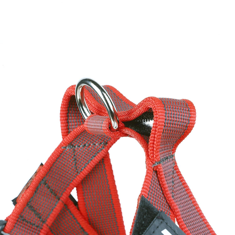 con Mango y Junta T/órica color rosa talla: 2 Arn/és para cintur/ón de seguridad JULIUS-K9 y Correa para Perro