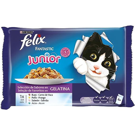 Felix - Fantastic Selecciones Favoritas - Paquete de 4 x 100 g - Total: 400 g: Amazon.es: Productos para mascotas
