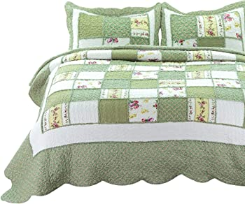 Bedsure 2-Piece Printed Quilt Set Twin Size