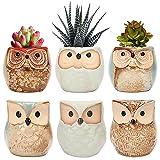 Succulent Planter Pots Owl Ceramic - Small Planter Pots with Drain Hole & Mesh Pad Small Cactus Flower Plant Bonsai…