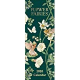 Flower Fairies - Agenda (2020), diseño de hadas: Amazon.es ...