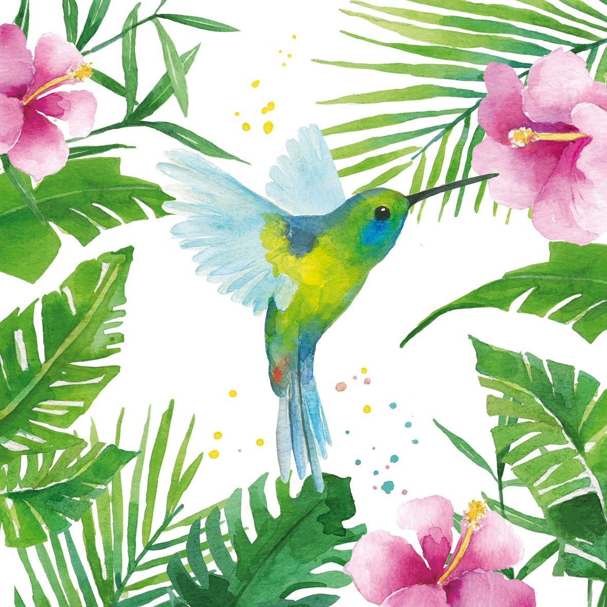 20Servilletas Colibrí Animales Paradies vacaciones 4026333x 33cm Serviette Kolibri