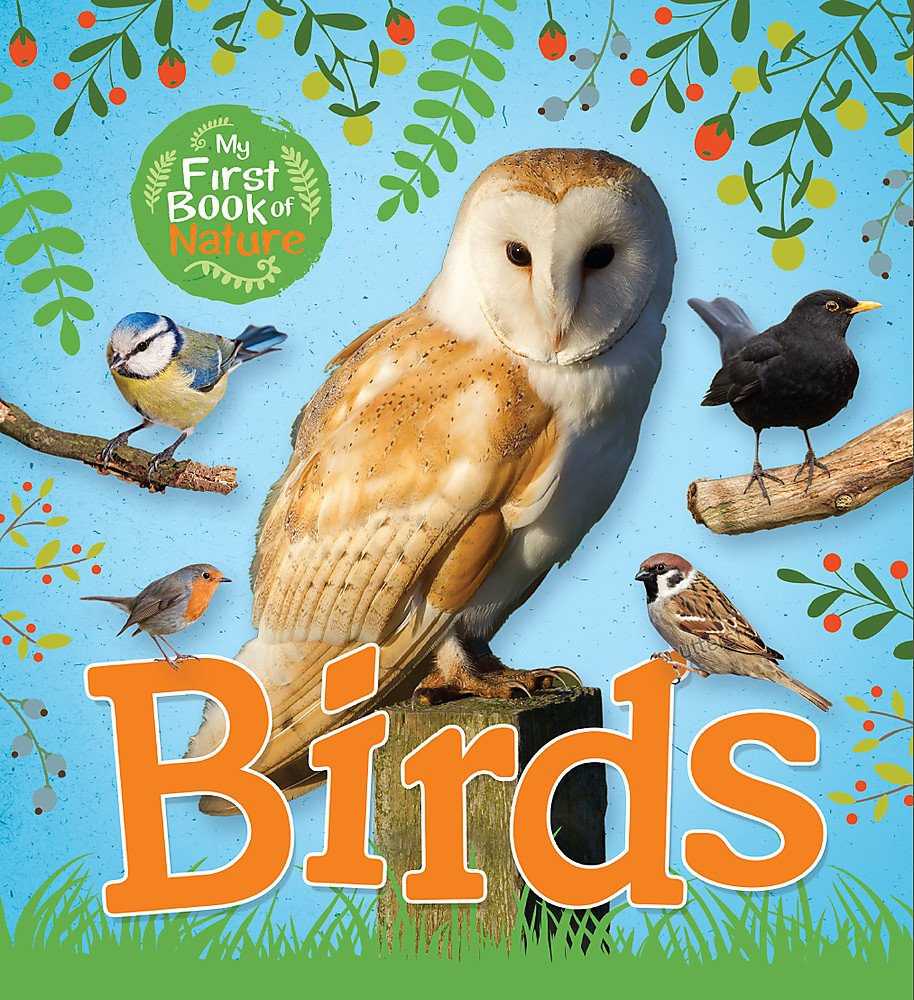My First Book of Nature: Birds pdf