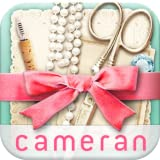 cameran collage-pic photo edit offers