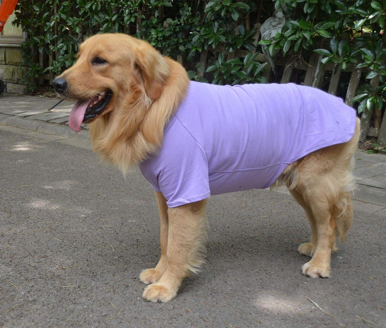Disfraz de Perro longlongpet 2019 Camiseta para Perros Grandes y medianos 100/% algod/ón 18 Colores