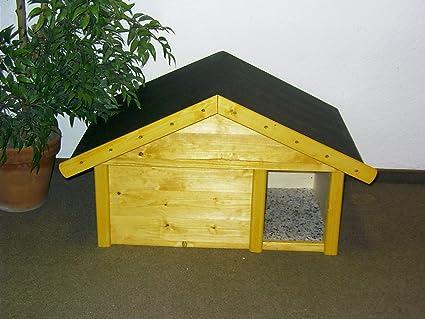 Gato Animales Pequeños Casa Exterior con Wind Fang aislado ...