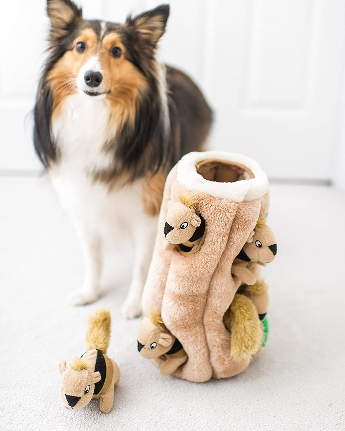Hide a Squirrel Dog Toy