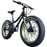 TRINX(トリンクス) ビーチクルーザー 【ファットバイク】T100 20インチ極太タイヤ Wディスクブレーキ CNCディンプル加工アルミホイール 軽量アルミフレーム SHIMANO7速 スノーバイク ビーチクルーザー