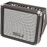 Kinsman 15 W Busker Amplifier
