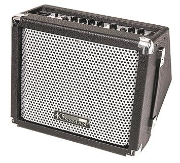 Kinsman kba158 Busker de amplificador con Red de funcionamiento con batería 15 W: Amazon.es: Instrumentos musicales