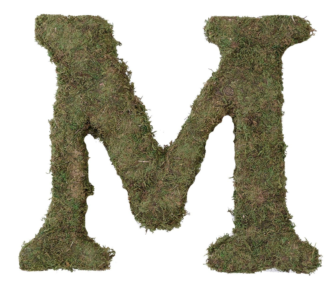 amazon com lillian rose moss letter for home decor 15 inch