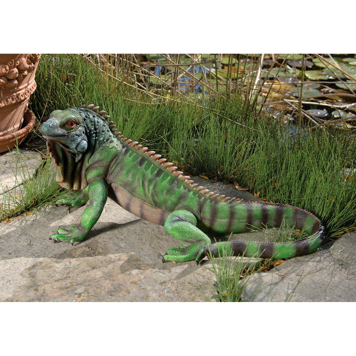 amazon com design toscano iggy the iguana garden statue
